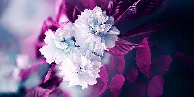 tablouri canvas floral
