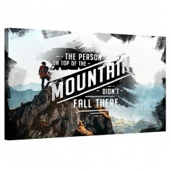 The person on top of the mountain didn't fall there_MNT198