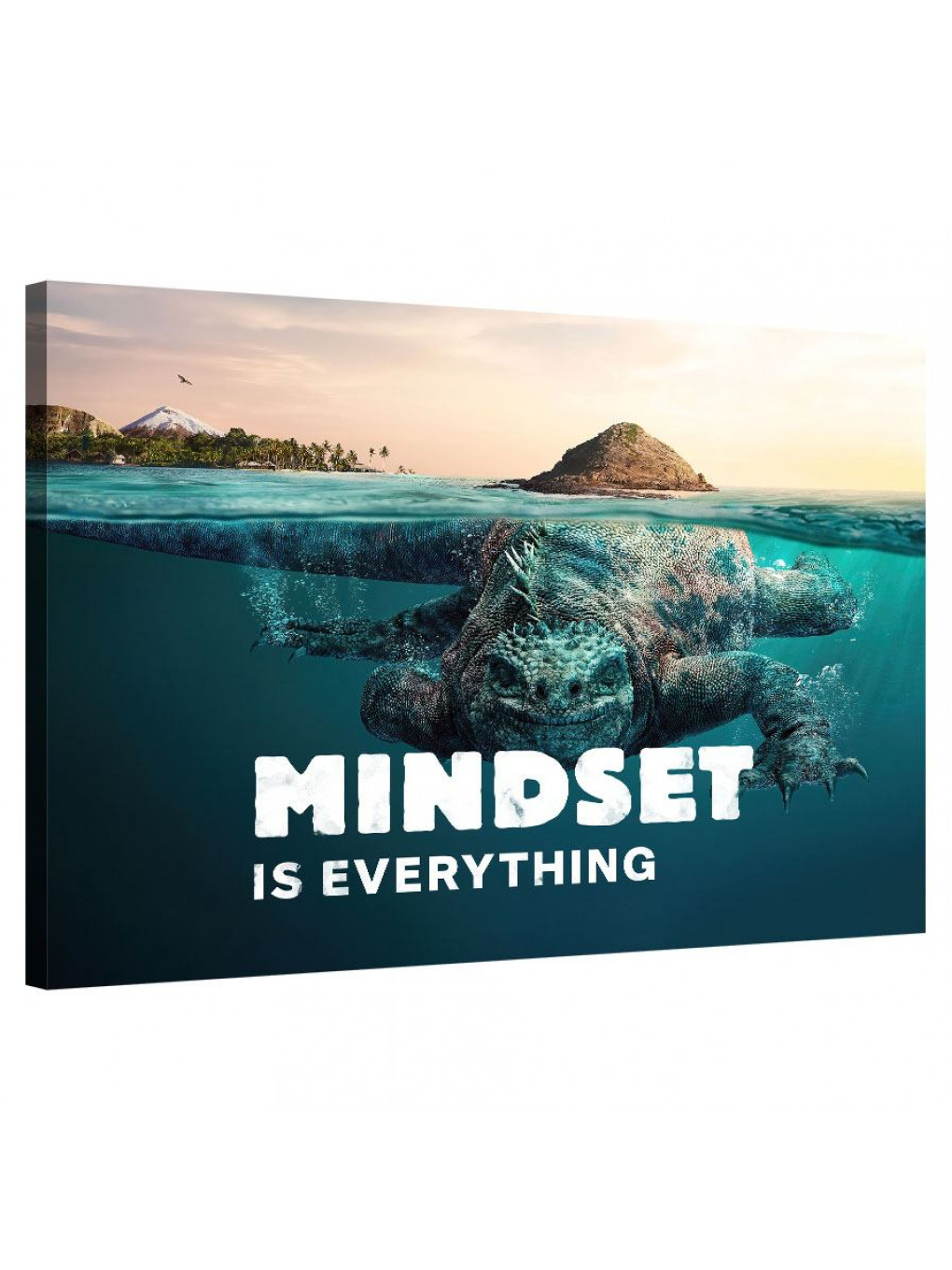 Mindset is everything (Lizzard)_MND119_0