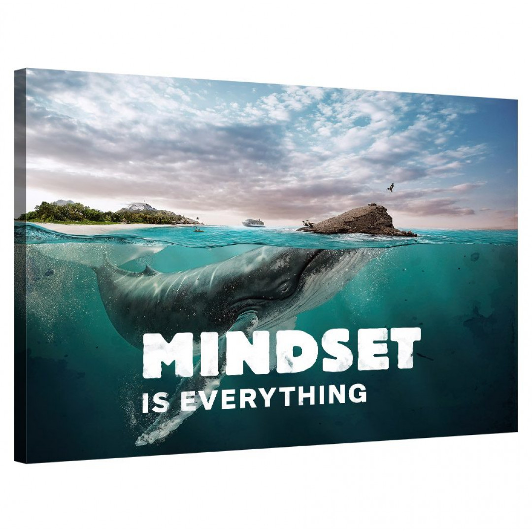Mindset is everything (Whale)_MND120_0