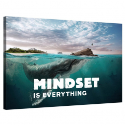 Mindset is everything (Whale)