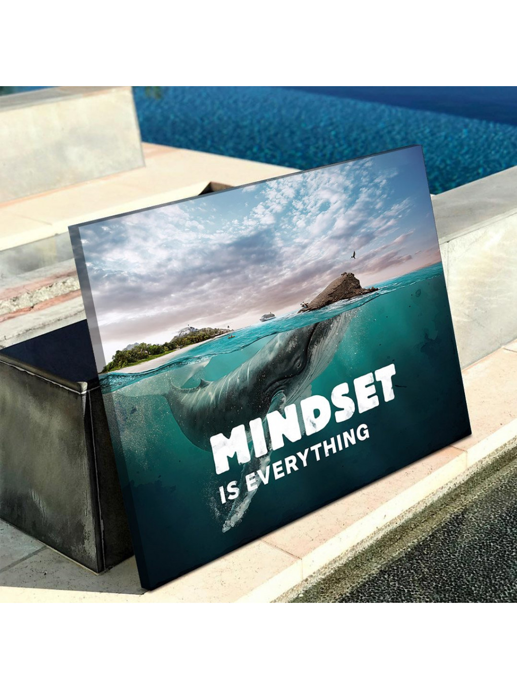 Mindset is everything (Whale)_MND120_3