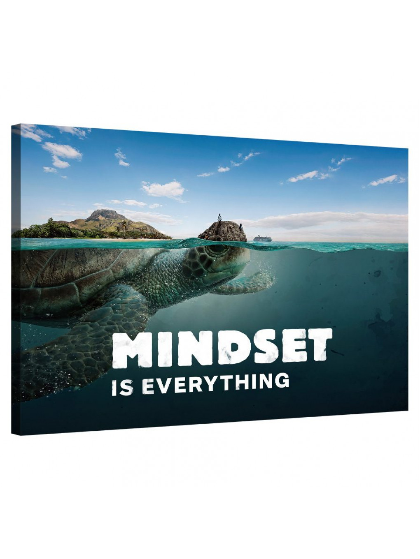 Mindset is everything (Turtle)_MND122_0