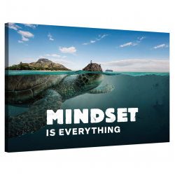 Mindset is everything (Turtle)