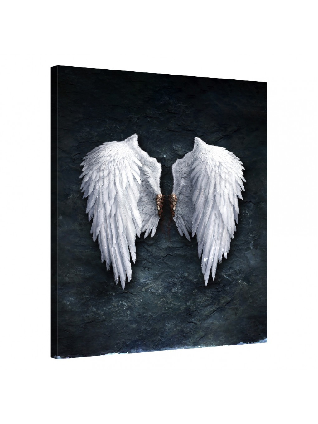 Celestial Wings_CEL142_0