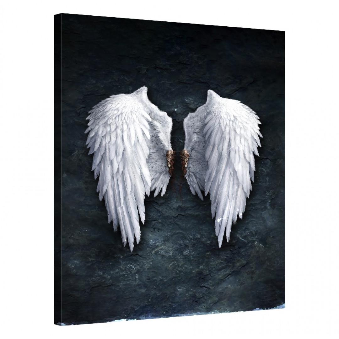Celestial Wings_CEL142_0