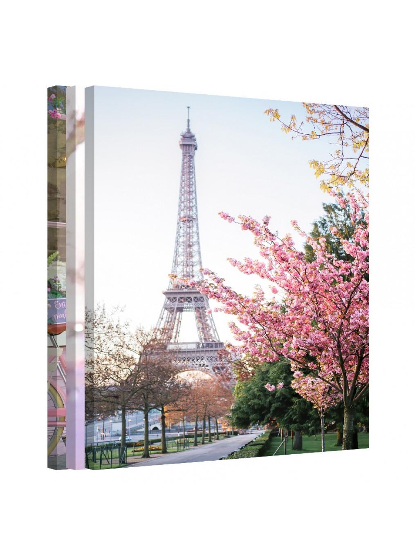 Bundle · Spring in Paris_PAR154_0