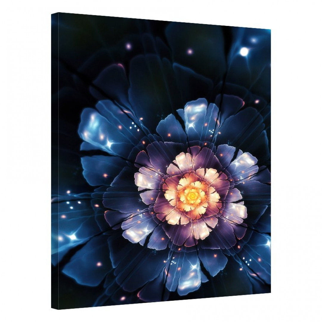Midnight Blossom_FLO197_0