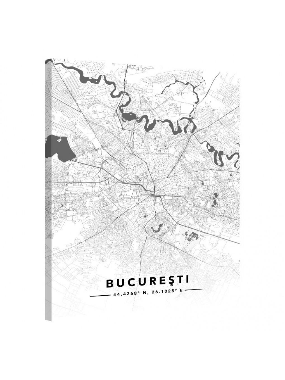 Bucureşti · Street Map_MAP201_1