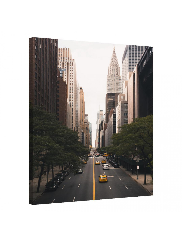 New York · United States_NWRKNTDSTT277_0