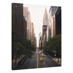 New York · United States_NWRKNTDSTT277