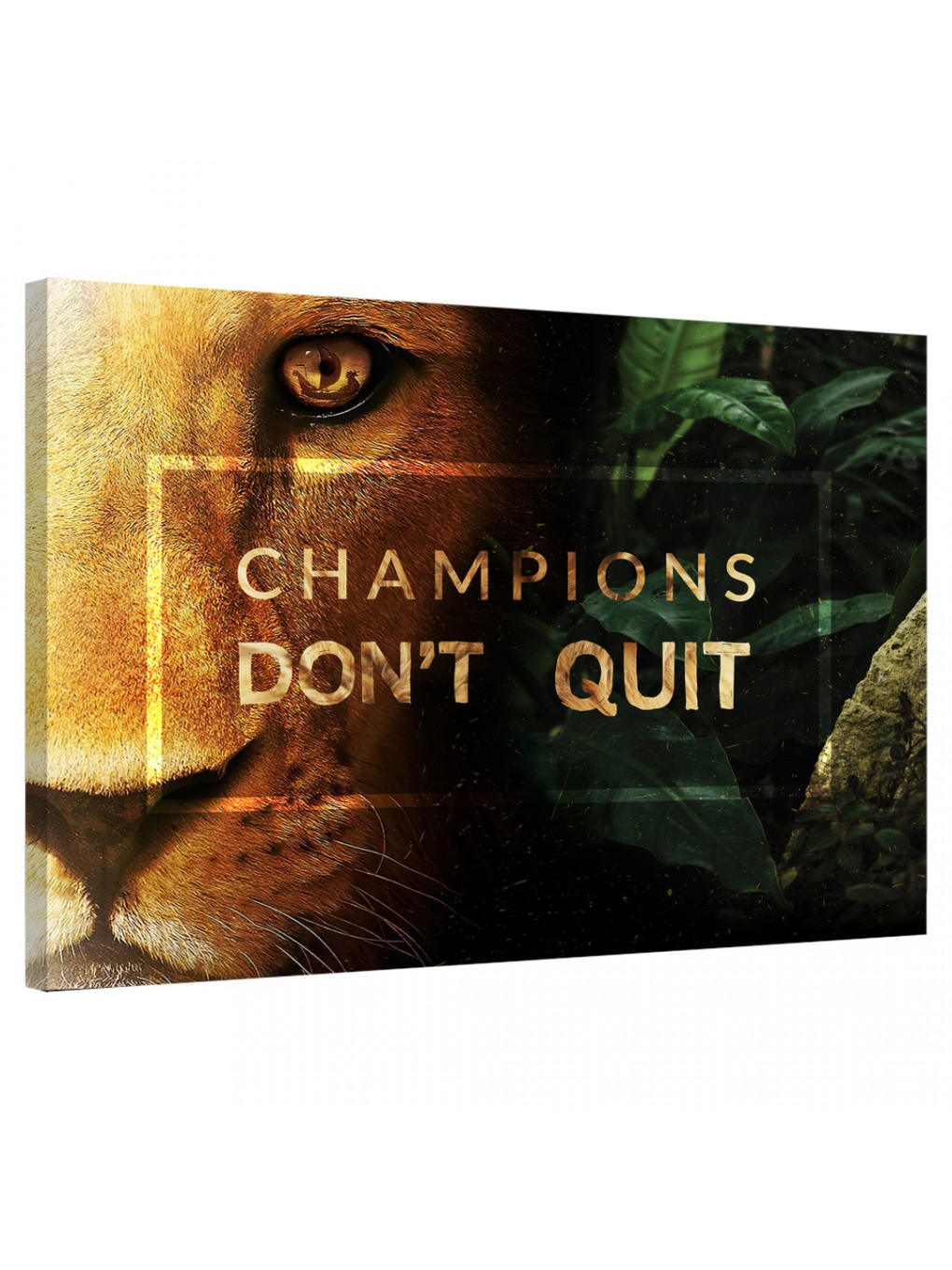Champions don't quit_CHA278_0