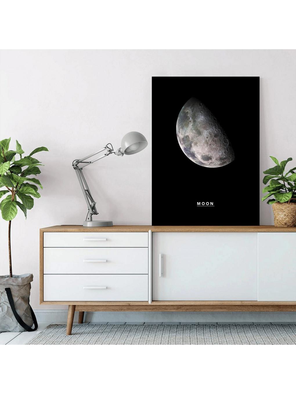 Moon_MON320_2