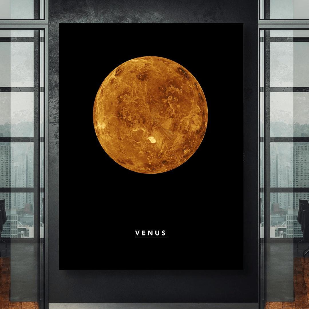Venus_VNS323_2