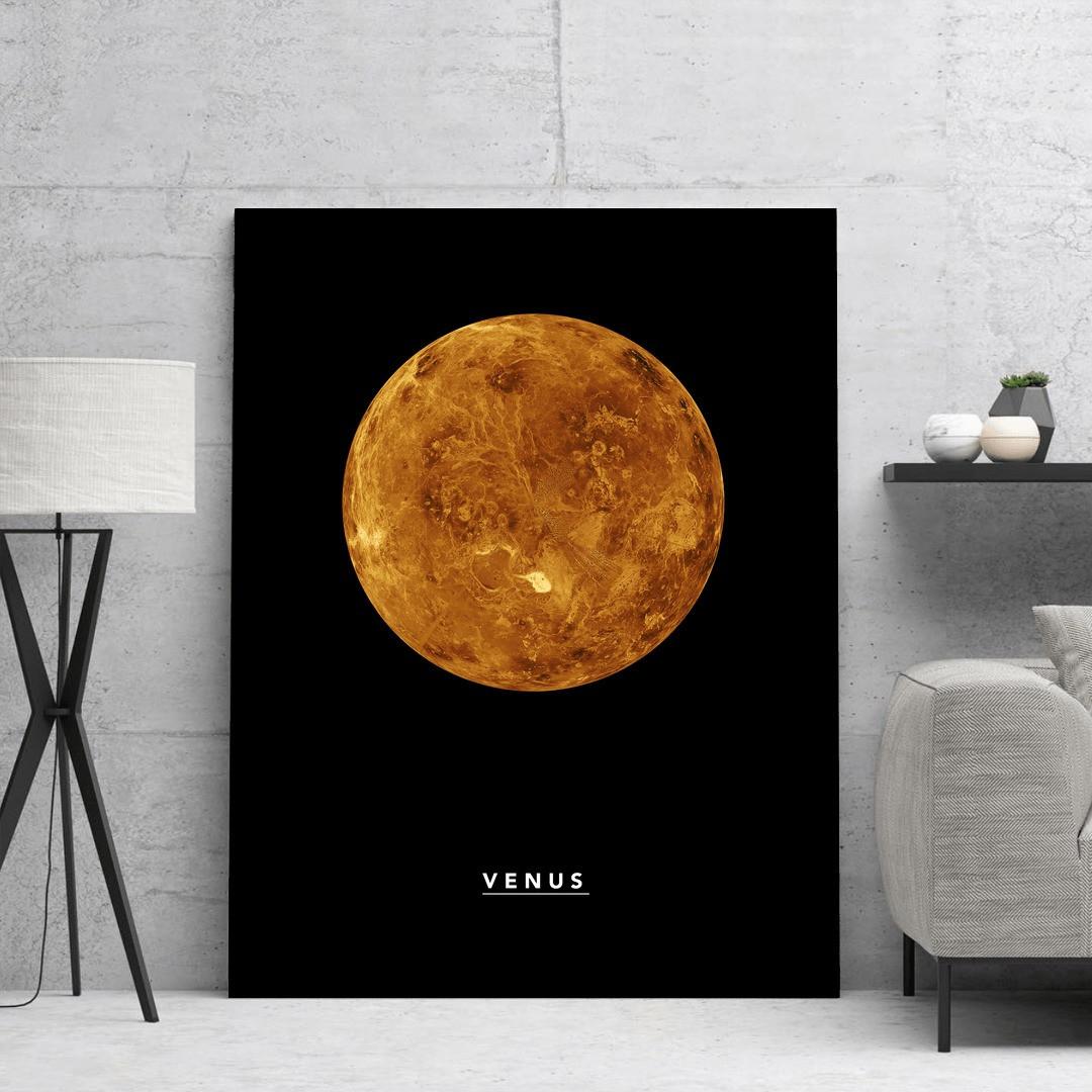 Venus_VNS323_5