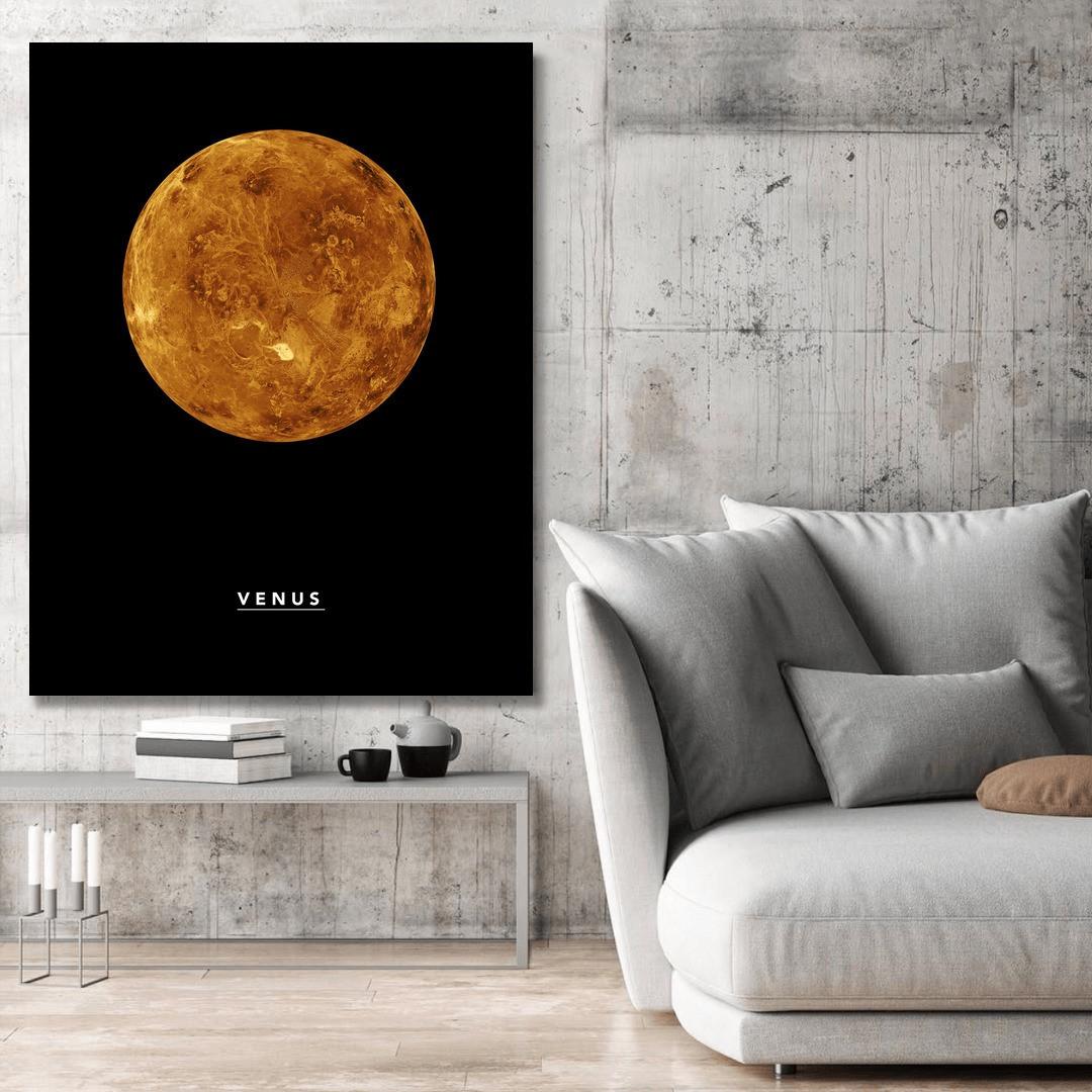 Venus_VNS323_4