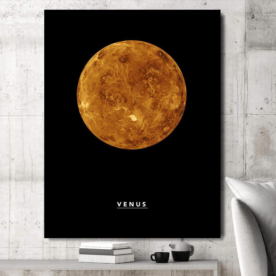 Venus_VNS323_1