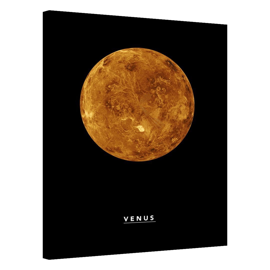 Venus_VNS323_0