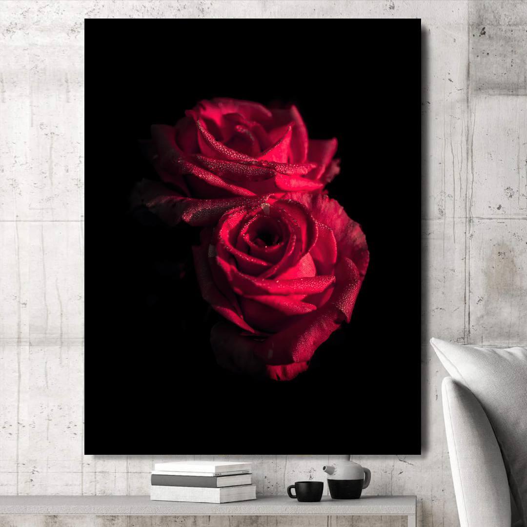 Rose_RSE342_5