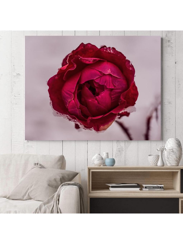 Frozen Rose_FRZRS343_3