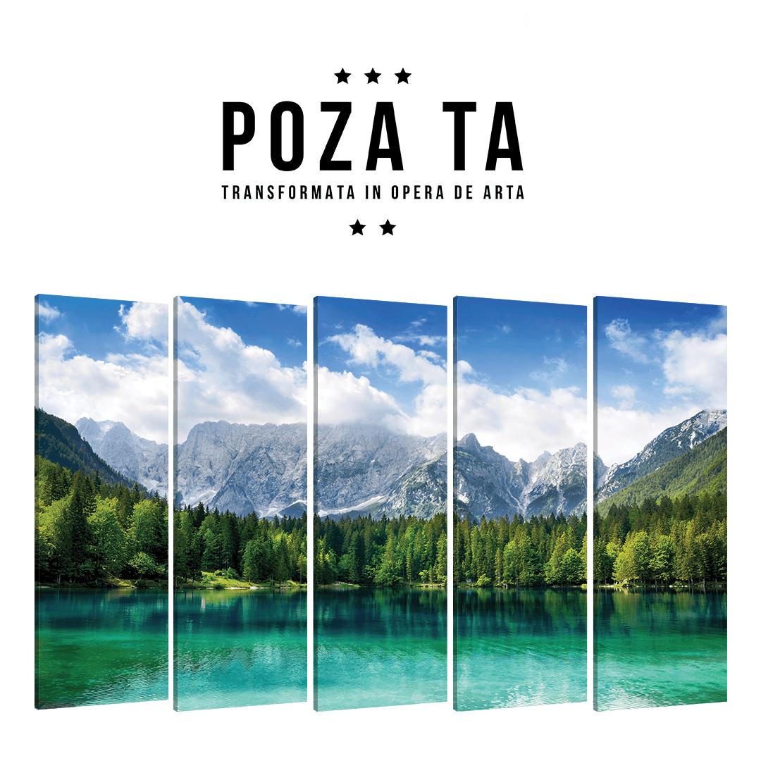 Tablou Personalizat Multicanvas · 5 Piese Full_CUST352_0