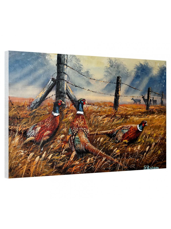Meadow Mist Pheasants_MMP821_0