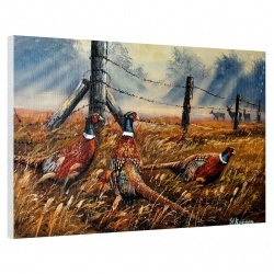 Meadow Mist Pheasants