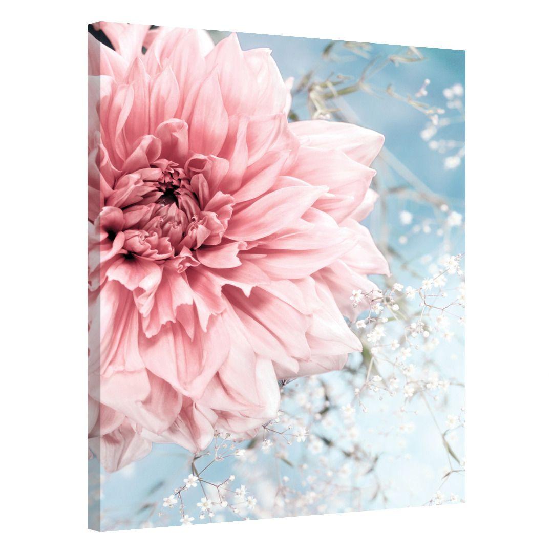 Spring Blossom_SPRBLS380_0