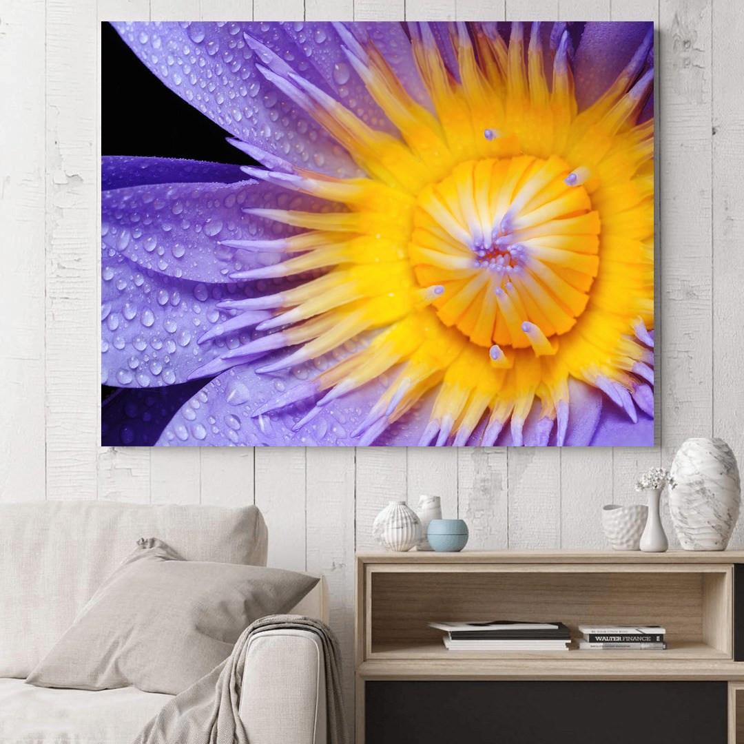Purple Lily_PRPLL394_4