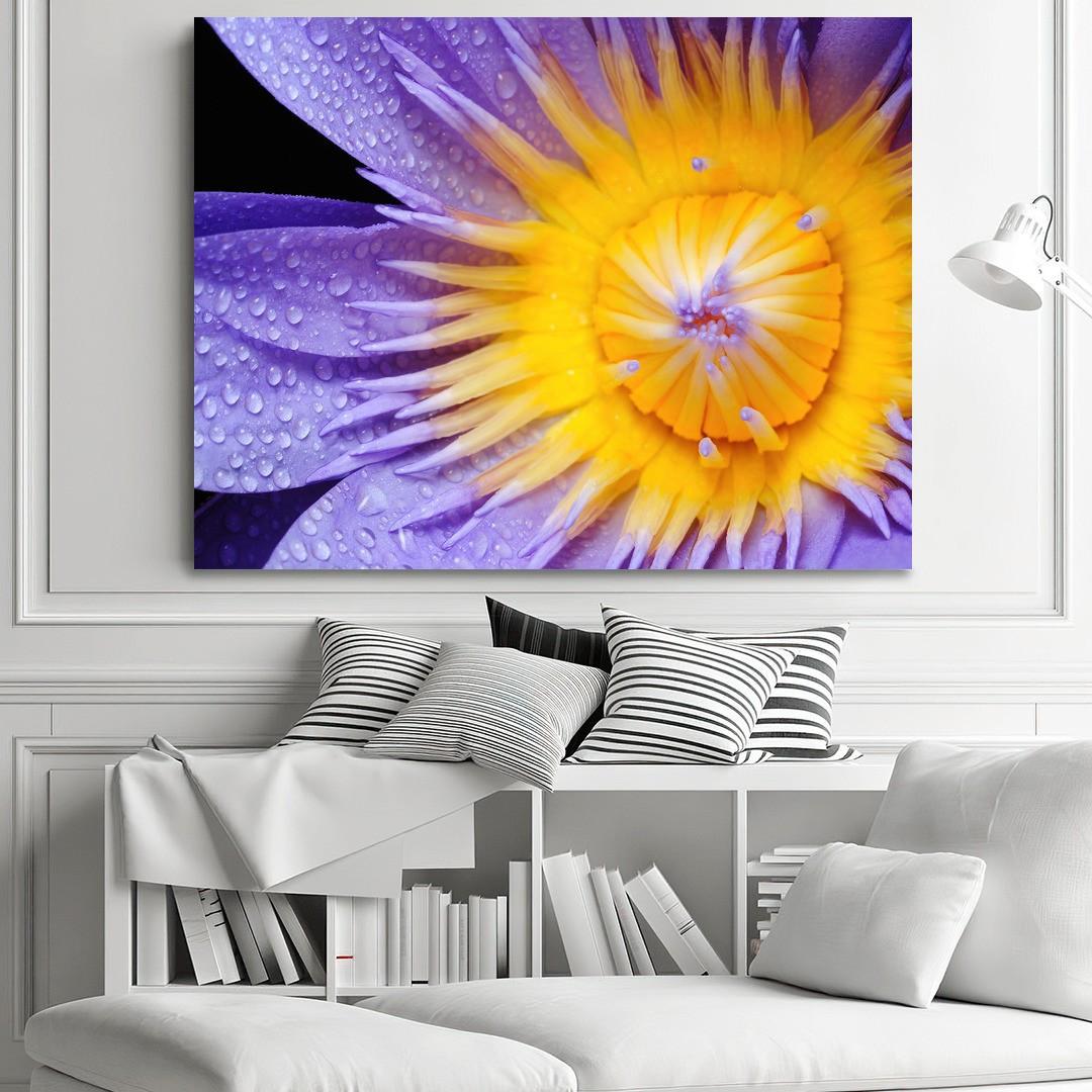 Purple Lily_PRPLL394_1