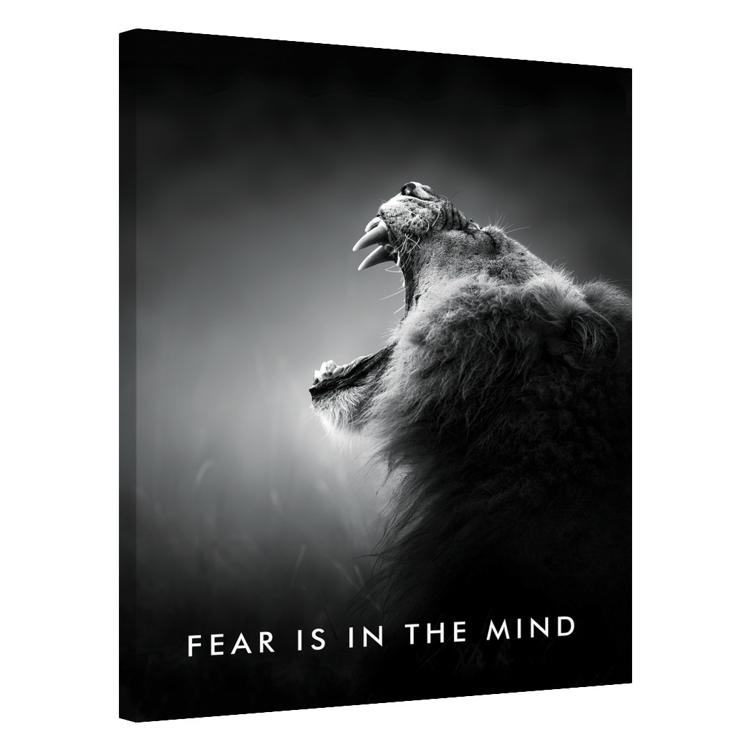 Fear Is In The Mind_FRM431_0