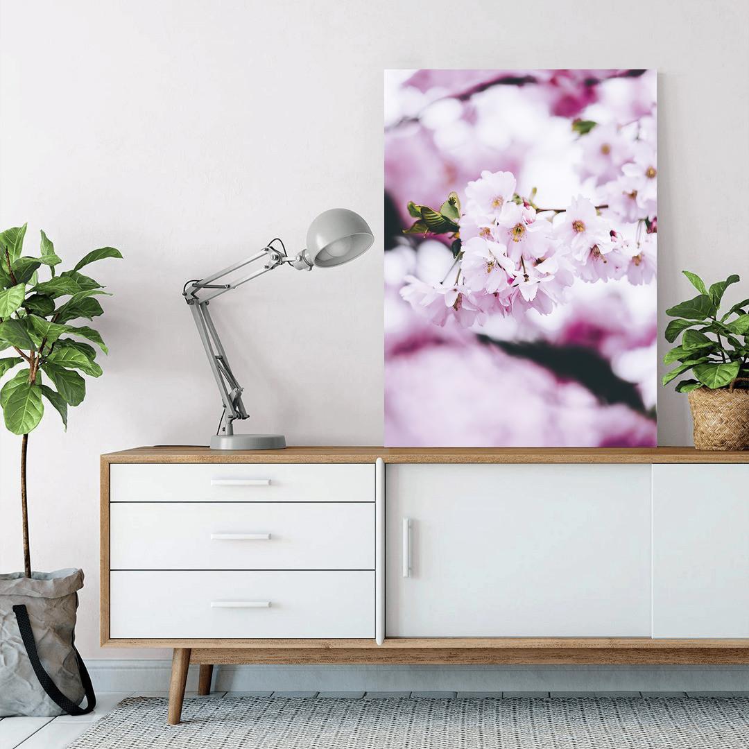 Cherry Blossom Spring_CBS497_2