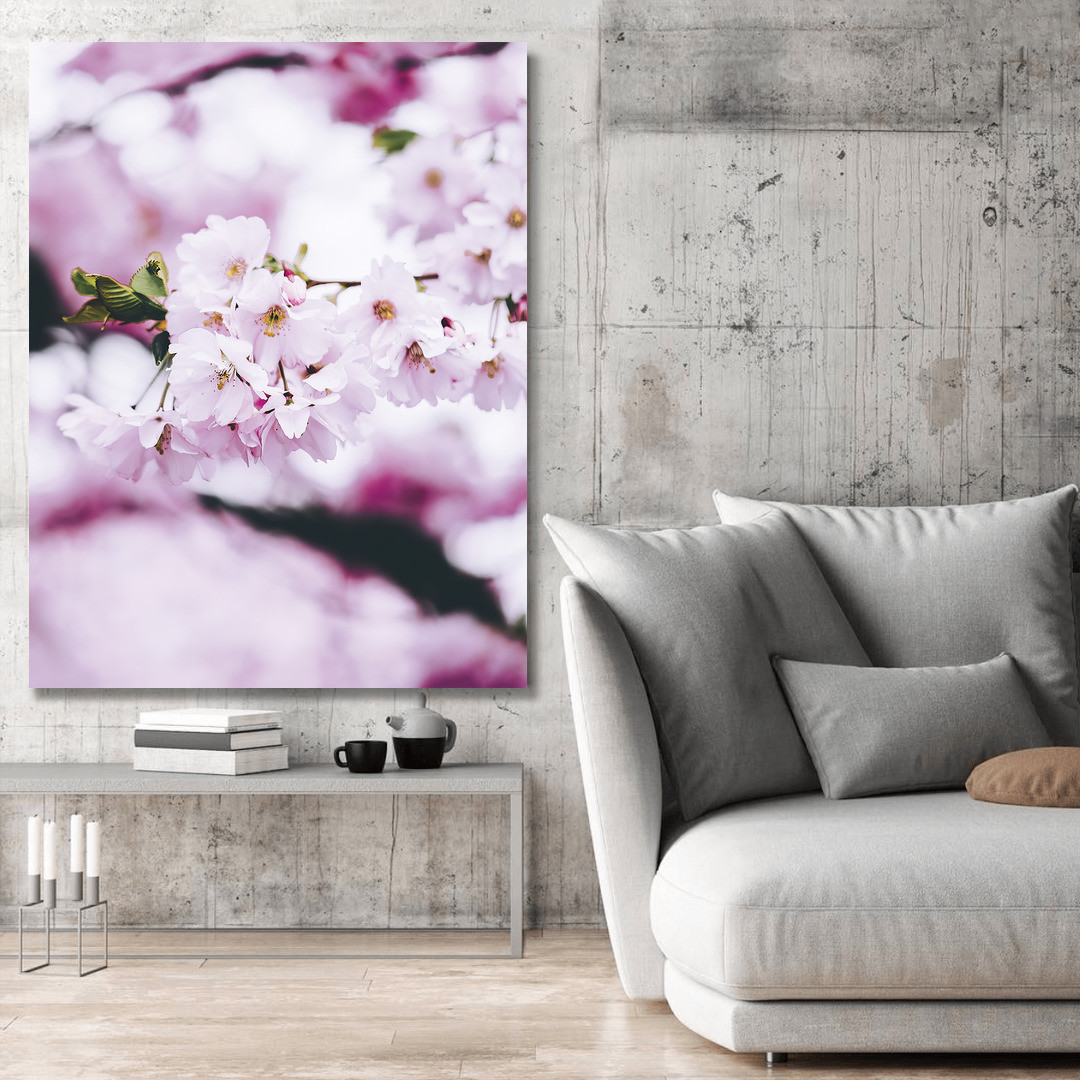Cherry Blossom Spring_CBS497_3