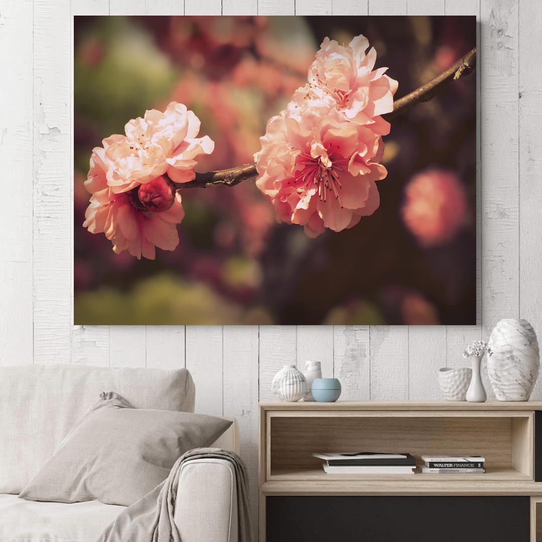 Sakura Blossom_SKRBLS498_1