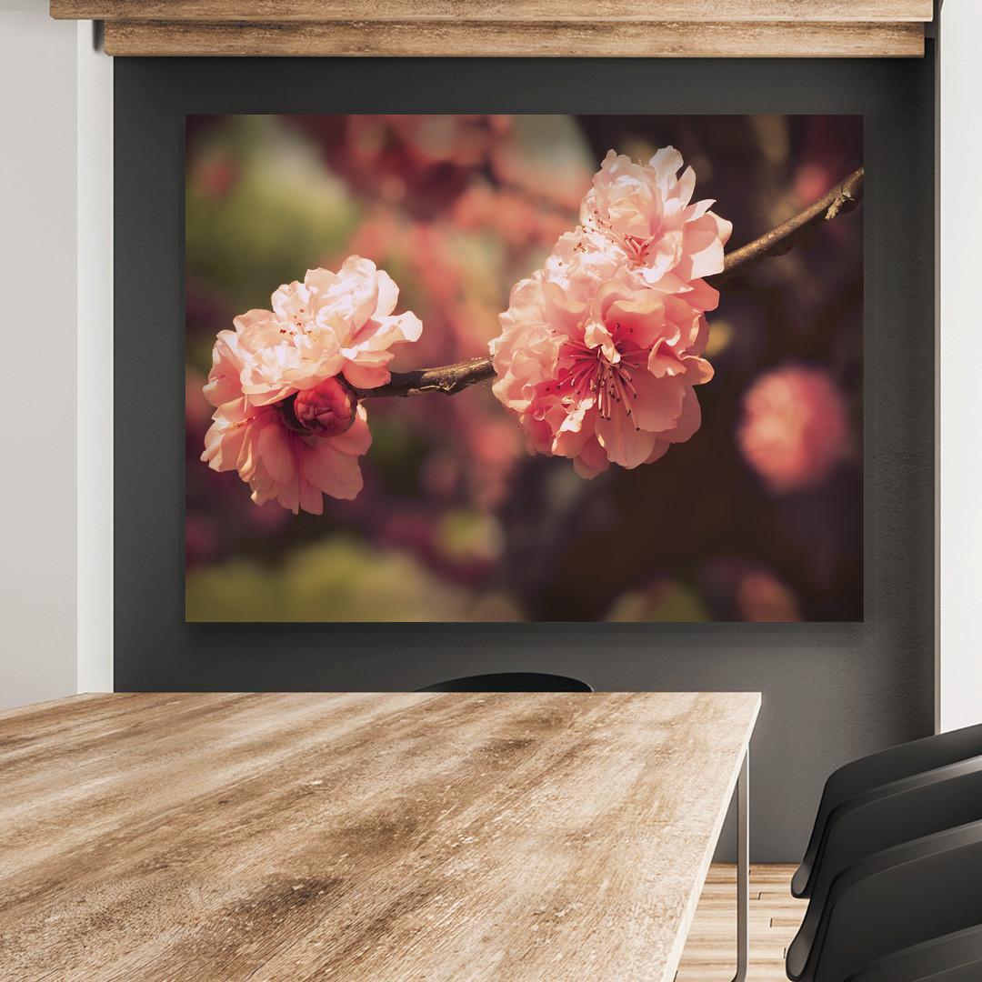 Sakura Blossom_SKRBLS498_3