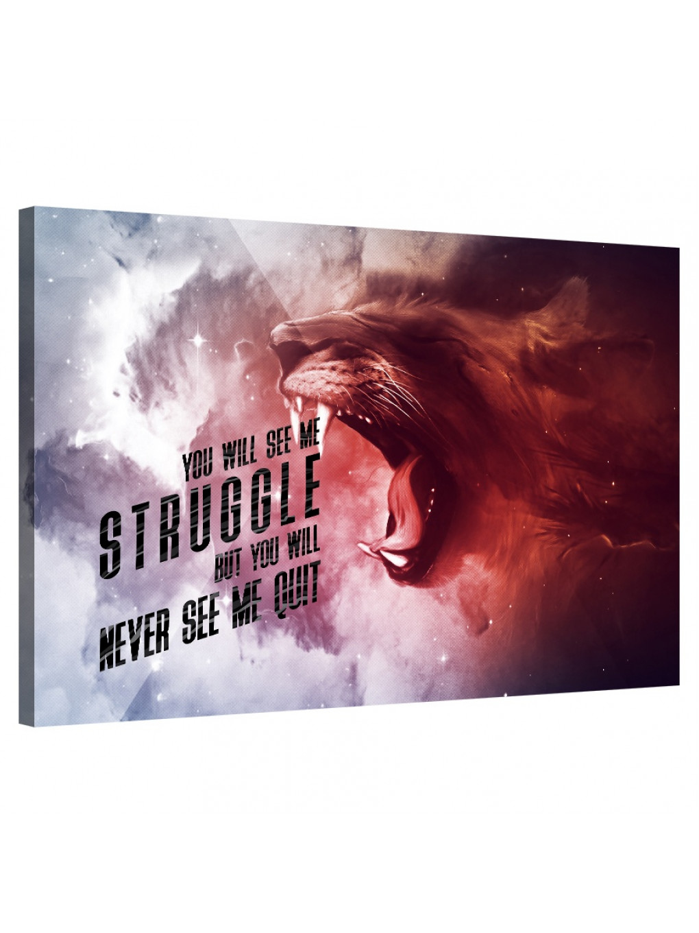You Will See Me Struggle_STR516_8