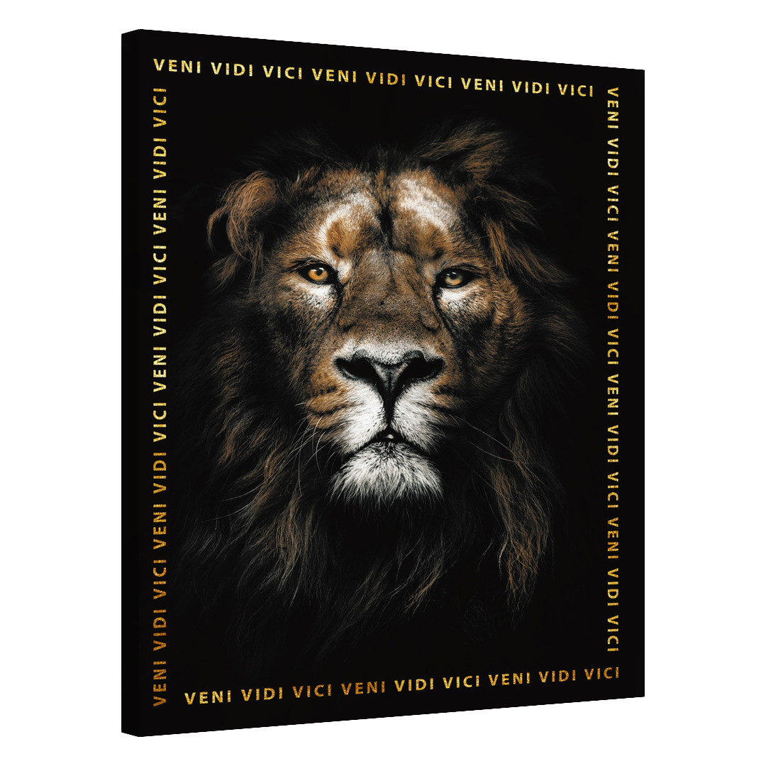 Lion · Veni Vidi Vici_LVVV565_0