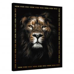 Lion · Veni Vidi Vici