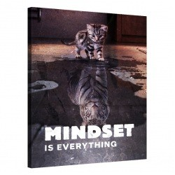 Mindset is everything  (Tiger)