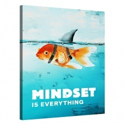 Mindset is everything (Shark)