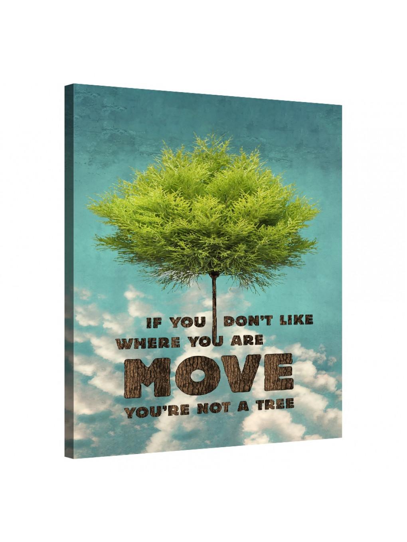 Move On_TRE086_0