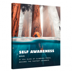Self Awareness_AWA098